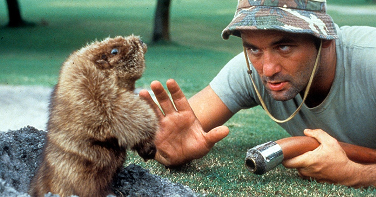 gal_drink_caddyshack_courtesy_warner_home_video.jpg