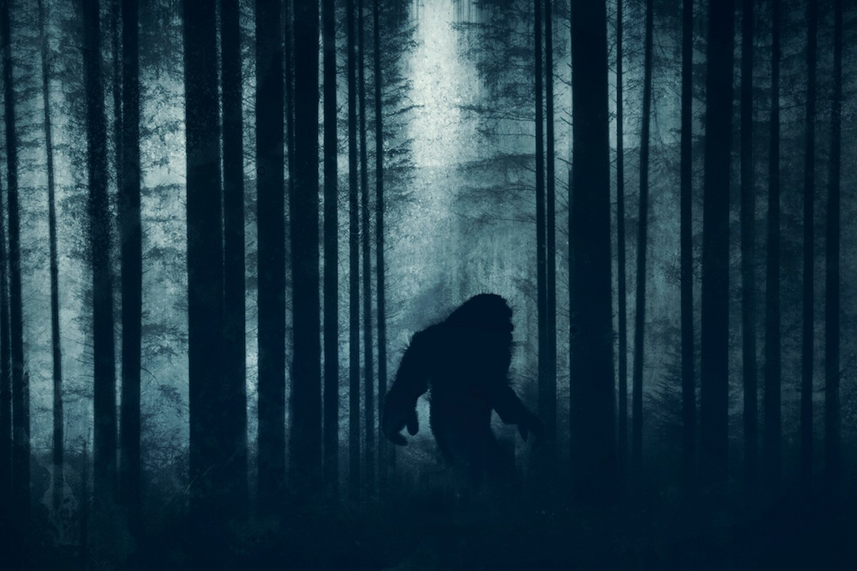 Saturday, July 10: The Great Florida Bigfoot Conference