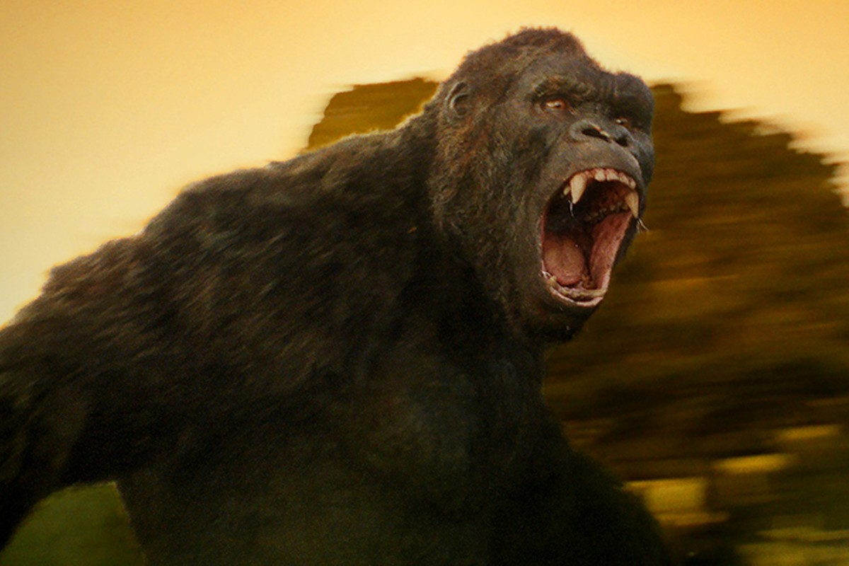 gal_kong_courtesy_warner_bros.jpg