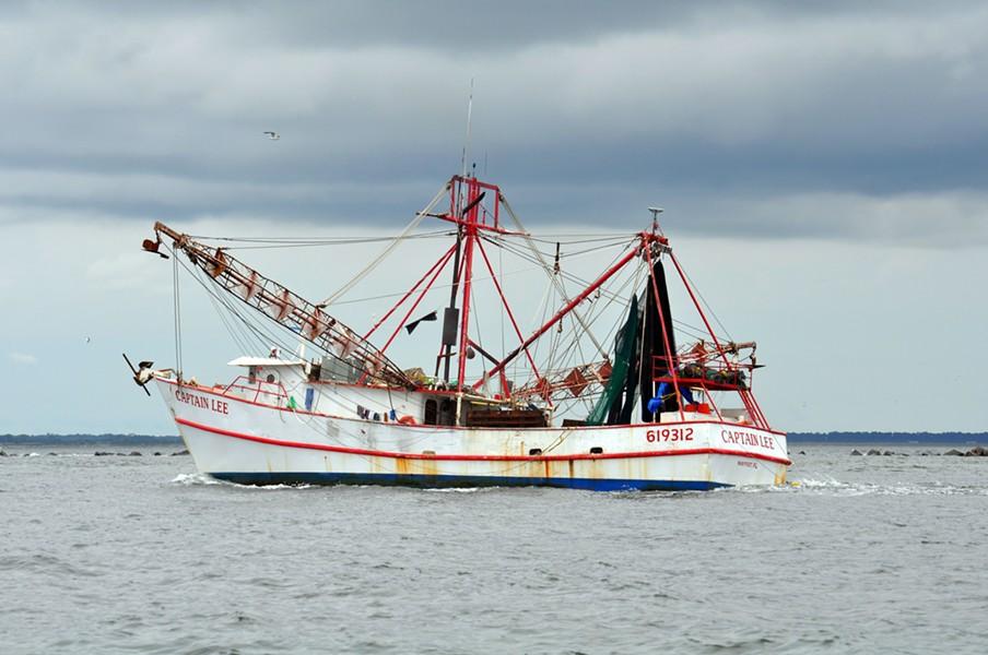 PHOTO BY AMANDA NALLEY VIA FLORIDA FISH AND WILDLIFE/FLICKR