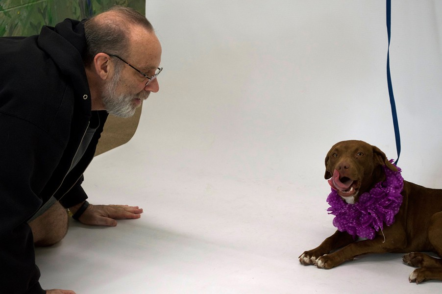 Pawsitive Shelter Photography's Paul Wean tries to get a shelter dog to smile for the camera. - PHOTO BY MONIVETTE CORDEIRO
