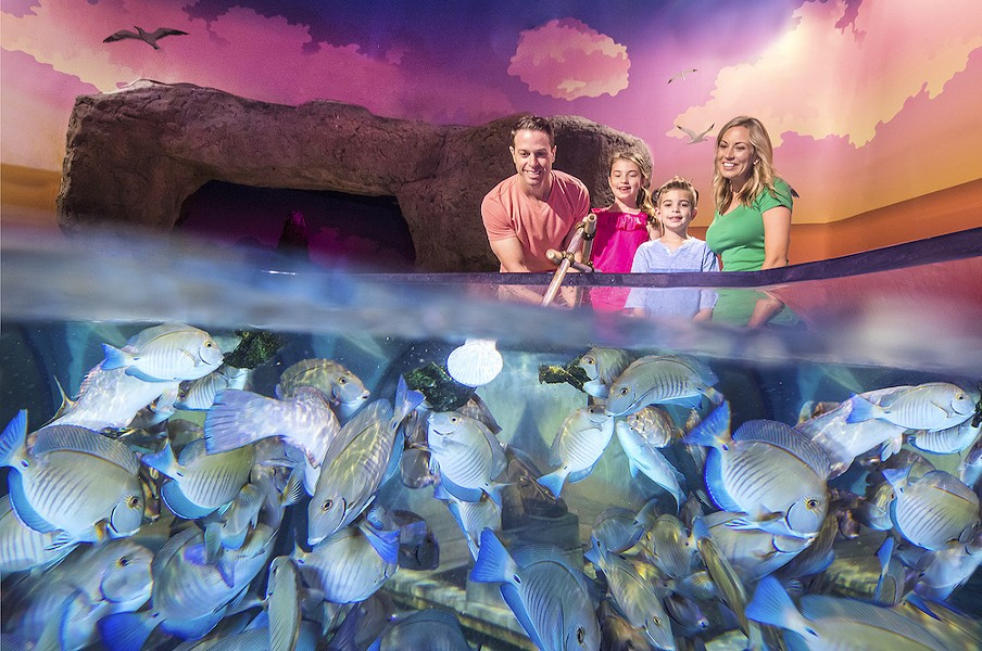 PHOTO COURTESY OF SEA LIFE ORLANDO AQUARIUM