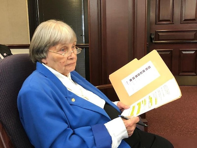 National Rifle Association lobbyist Marion Hammer - PHOTO VIA NEWS SERVICE FLORIDA