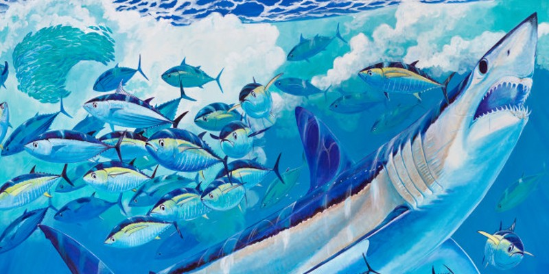 12ac71851352e Watch marine artist Guy Harvey paint a new shark mural at SeaWorld ...