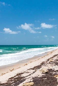 There's a petition to keep Florida beaches open to the public