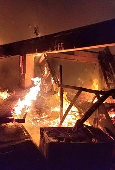 Dozens of animals killed in fire at Orange County wildlife sanctuary