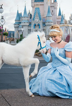 Cinderella has a new fluffy pony at Disney World