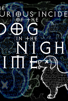 Fringe 2019 Review: 'The Curious Incident of the Dog in the Night-Time'