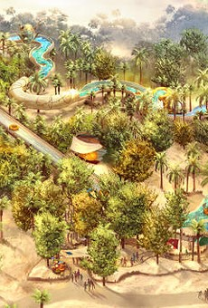 New waterslide coming to Disney's Typhoon Lagoon