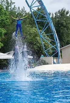 British Airways Holidays ends trips to SeaWorld Orlando, 'will no longer promote attractions featuring captive animals'