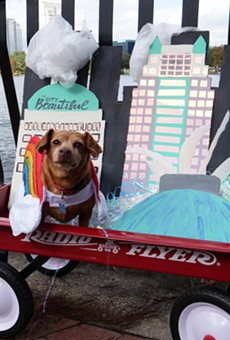 Paws in the Park will parade the pups at Lake Eola on Saturday