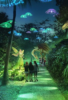 'Dragons and Fairies' concept art