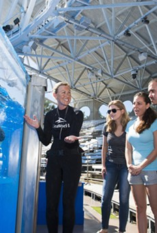 SeaWorld's latest tour lets you get up-close with killer whales