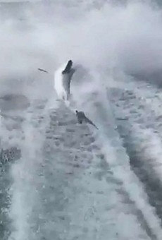 Angry over shark-dragging video, people are sending death threats to the wrong Florida man