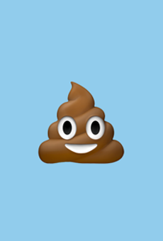 Thanks to Irma, Florida is now a literal pile of poop