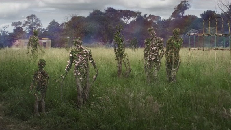Image result for annihilation trees