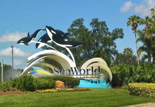 SeaWorld's plans through 2020 just got leaked and there's a