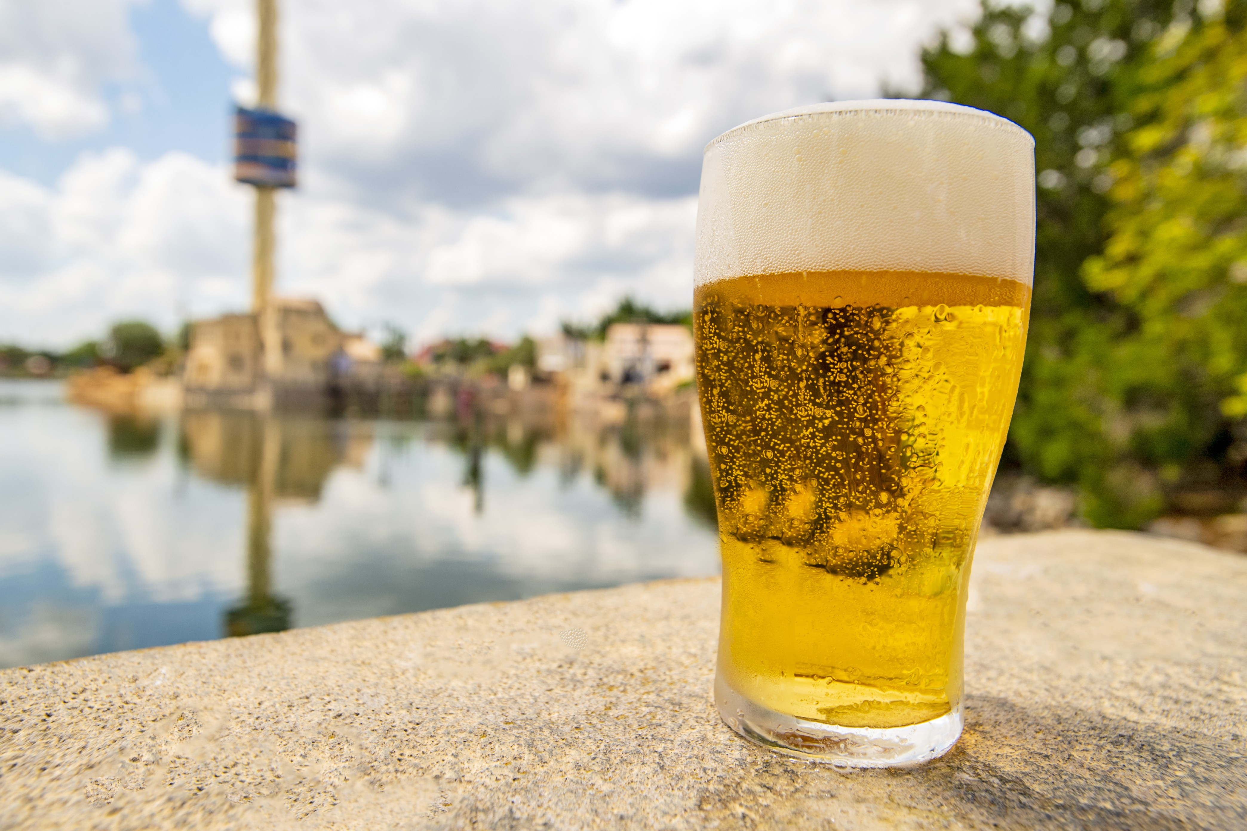 SeaWorld Orlando is giving away free beer again this summer