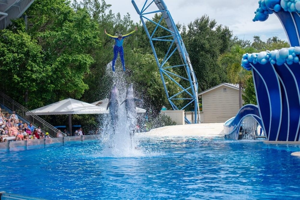 PETA releases SeaWorld Orlando photos, alleges dolphin abuse: 'imagine if someone stood on your mouth'