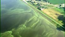 White House backs Florida's effort for Everglades reservoir