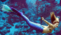 Weeki Wachee Mermaids visiting Sea Life Aquarium this week