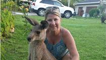 Florida's fugitive kangaroo, Storm, has been found