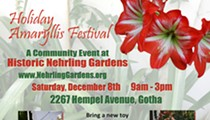 Holiday Amaryllis Festival