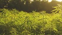 Florida lawmaker proposes creating a state hemp program