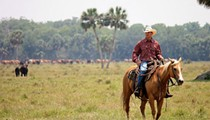 Deseret Ranches development plan in Osceola County gets mixed reviews