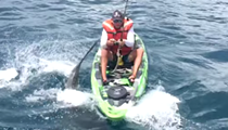 A Florida fisherman was knocked off his kayak by a shark, still reels it in