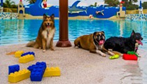 Bring your dog to Legoland on Nov. 8