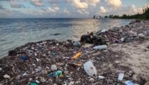Florida Senate panel pushes 5-year moratorium on local plastic straw bans