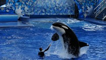 Major hotel expansions rumored for SeaWorld Orlando and Busch Gardens