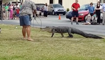 Lakeland students watch as 10-foot gator is trapped on campus