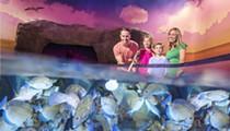Sea Life Orlando Aquarium will launch multi-sensory fish feeding experience