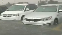Orlando's Sunday downpour turned the parking lot of SeaWorld into an actual sea world