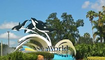 SeaWorld gets new board chairman Scott Ross, former director of Chuck E. Cheese's parent company