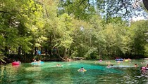 Florida judge rules that, yes, the Nestle corporation can continue to draw water for bottling from Ginnie Springs