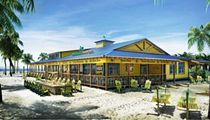 Jimmy Buffett's LandShark Bar & Grill is coming to Daytona Beach