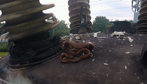 Snake knocks out power to 22k Florida residents, dies
