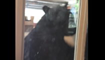A Seminole County man chased a massive bear out of his garage