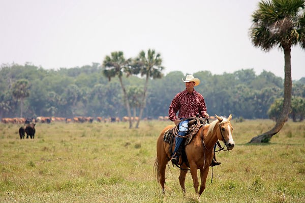 Deseret Ranches Development Plan In Osceola County Gets