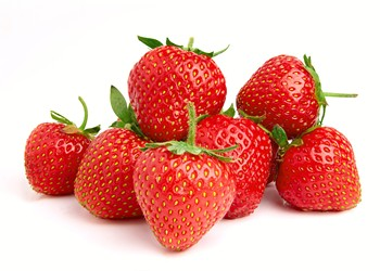 Researchers at University of Florida have developed a new, stronger and tastier strawberry