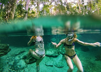 These are a few of our favorite springs