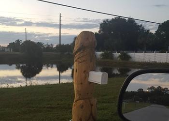 Florida man installs giant wooden dick mailbox