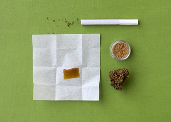 The 420 Issue: Now that you have your Florida MMJ card, what products should you use?