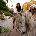 Holy Land Experience free day is basically your only chance to get your tax money's worth out of the park
