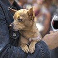 Cavanaugh's Wines invites you to bring your pooch to happy hour to score free swag