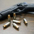 Gun control among issues Florida's constitutional panel will consider