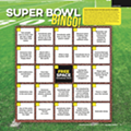 Super Bowl Bingo 2016